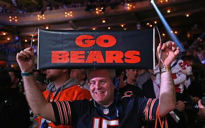 Draft Bears