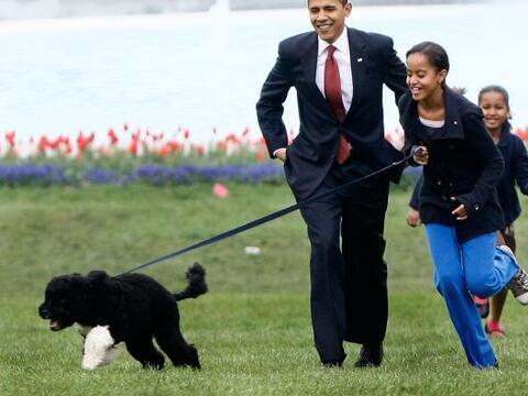 Además de que la familia presidencial tiene esta raza porque es p...