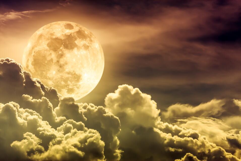 Lunas Signos