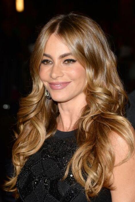 Sofía Vergara es una de las actrices hispanas más queridas por el públic...