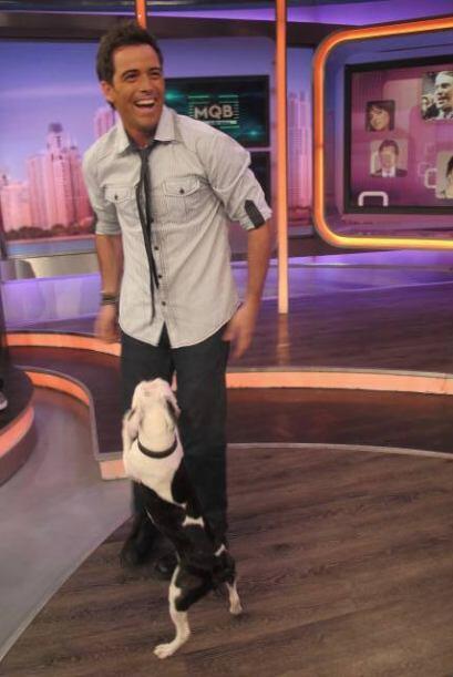 Además tiene muy bien entrenado a su perrito, para que lo acompa&...