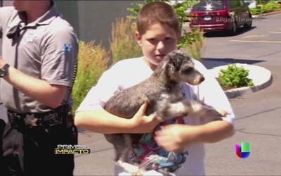 Perro encerrado en un auto fue rescatado por la policía