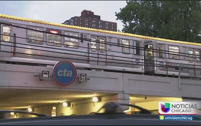 Detectan presencia de chinches en tren de la línea roja de la CTA