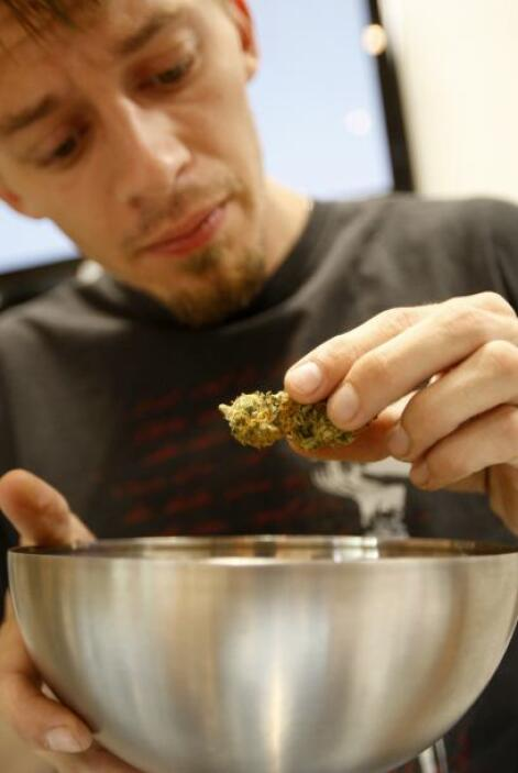 La legalización de la marihuana ha sido incluida en las boletas electora...