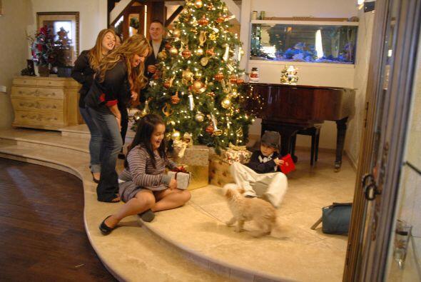Nos permitieron estar en la decoración de su árbol de Navidad. Un moment...
