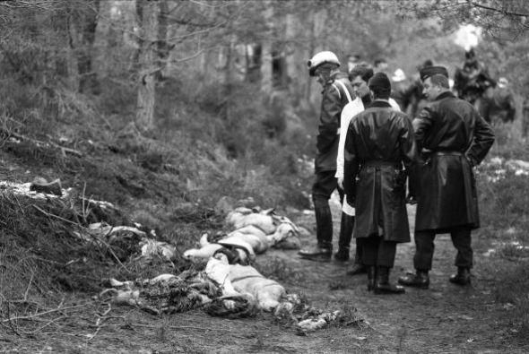 El avión se estrelló en un bosque al Noreste de Paris, matando a las 346...