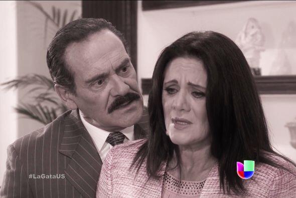 Usted fue el malvado que la separó de don Fernando y le arrebató a su pe...