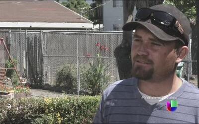 Un jardinero hispano casi va a la cárcel por tumbar un nido de un árbol
