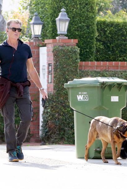 ¡Pero qué buen día para salir en Malibú a pasear con su mascota!