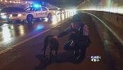 Policías bondadosos rescatan animales
