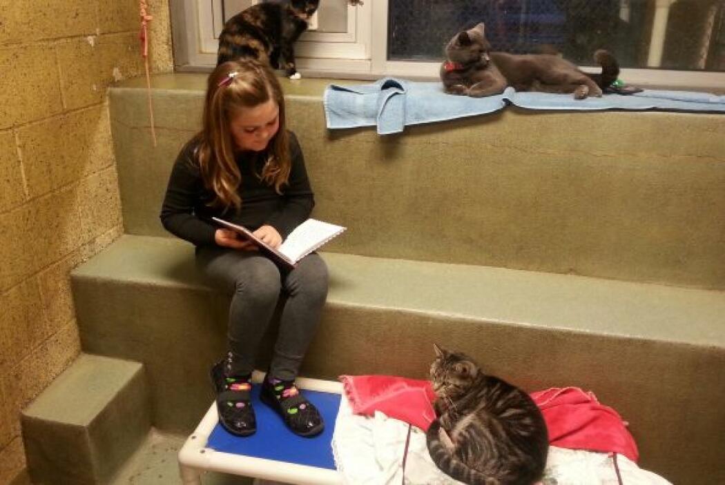 Cheyenne Boyle en el programa Books Buddies del Animal Rescue League del...