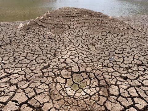 Una sequía ha arrasado sin piedad algunas zonas de Honduras en los últim...