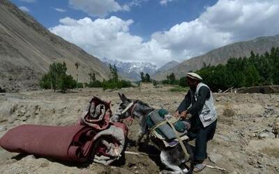 Un aldeano afgano tira de un burro llevando sus pertenencias mientras ca...