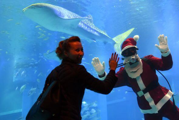 Los visitantes del acuario se encuentran fascinados al ver a Santa dentr...