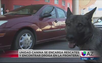Entrenan a equipo canino para detectar contrabando en la frontera
