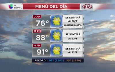 Aproveche este miércoles clima agradable en NY