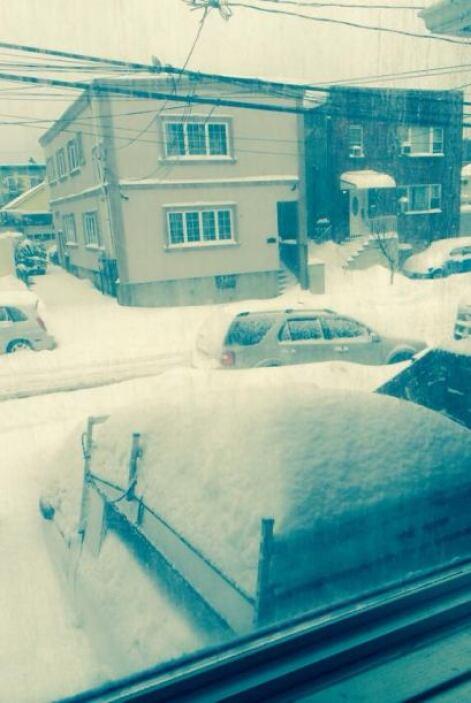 Cesi Orellana nos envía una imagen desde North Bergen, NJ.