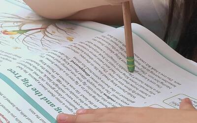 Aprendiendo a leer, para después leer para aprender