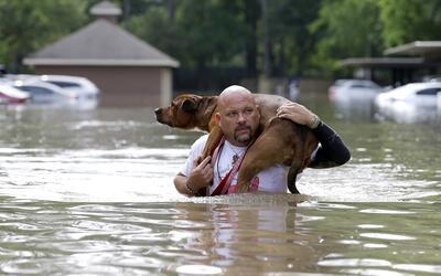 En algunas zonas, las inundaciones causaron víctimas fatales.