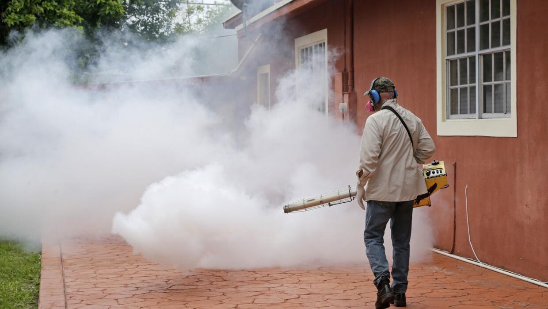 ¿Cómo se gana la batalla contra el zika?