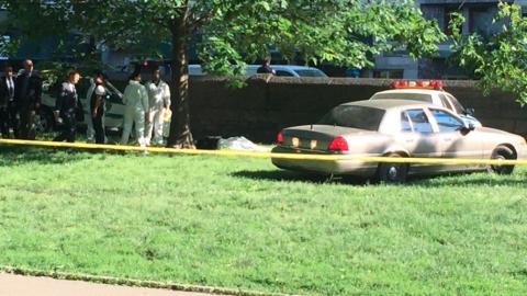 Forenses estudiaron la escena antes de llevarse el cuerpo del parque.