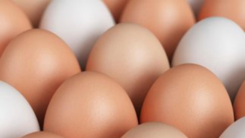 Según fuentes europeas, 86,000 huevos, o seis toneladas, fueron mezclado...