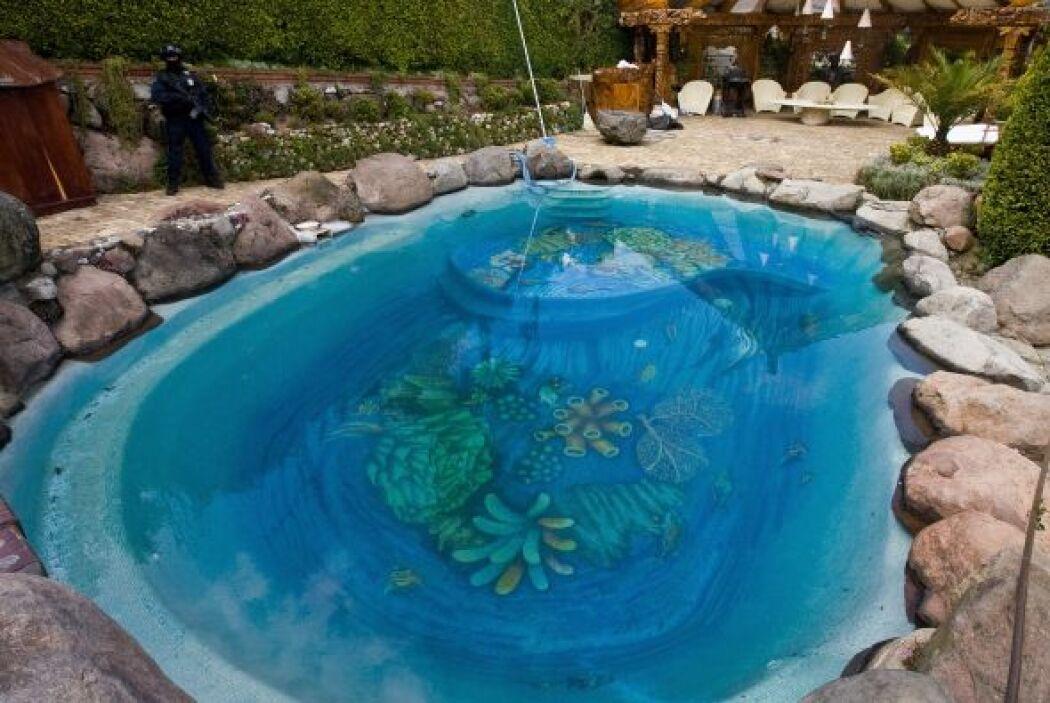 El fondo de la alberca tiene pintado un paisaje marino con corales y esp...