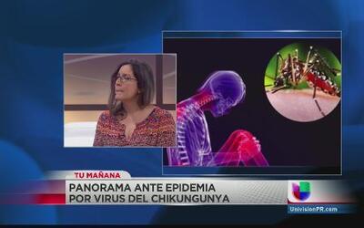 Mayor concentración de casos de chikungunya están en San Juan