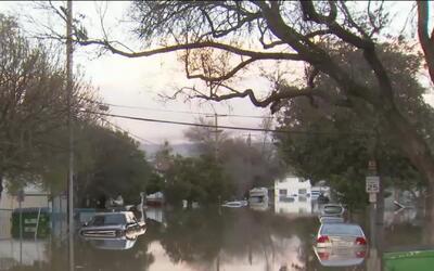 'Área de la Bahía en un Minuto': Más de 36,000 familias han evacuado sus...