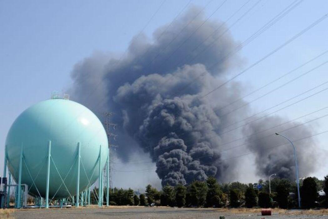 Un control de todas las plantas nucleares del país será llevado a cabo p...