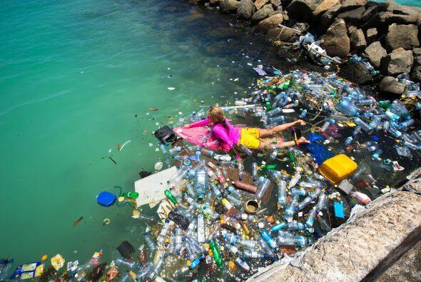 Las fotografías mostraron una cantidad impresionante de residuos plástic...