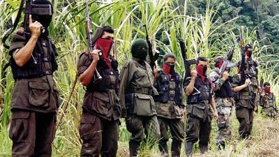 Ejército de Liberación Nacional, segundo grupo gtuerrillero de Colombia