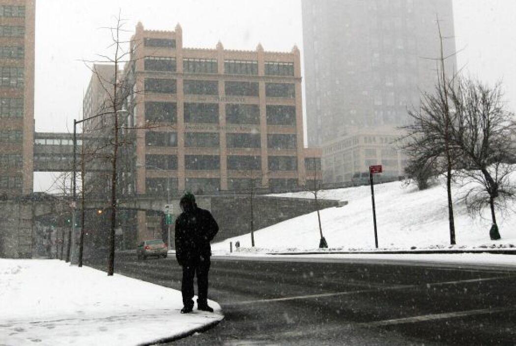 Central Park registró 23 centímetros de nieve,  tan sólo la mitad de la...