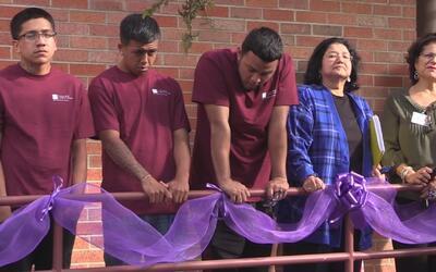 San Antonio College, contra la violencia doméstica
