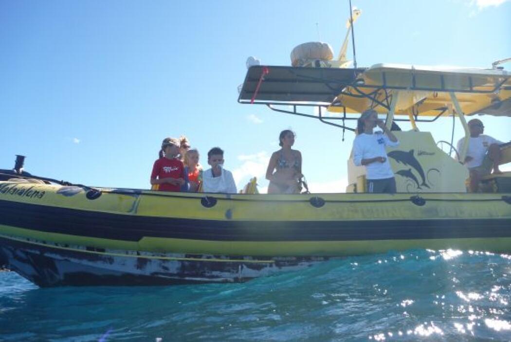 El conductor se sumergió a las profundidades del mar.