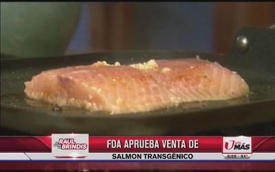 FDA aprueba venta de salmón transgénico