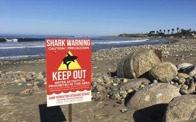 Esta foto del 30 de abril del 2017 muestra un aviso de advertencia en la...