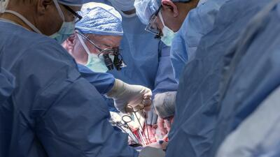 Trasplante de útero