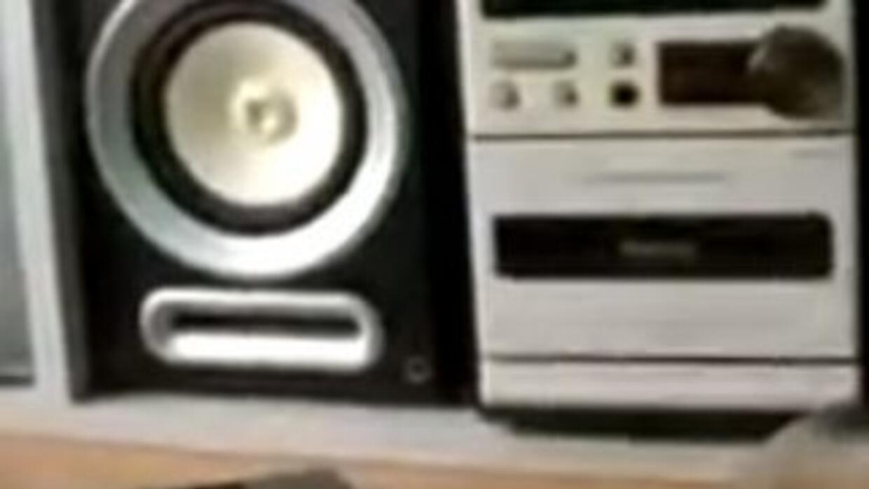 Bass Loud