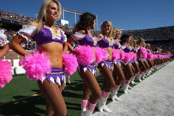 Minnesota Vikings: KAYLEE (AP-NFL).