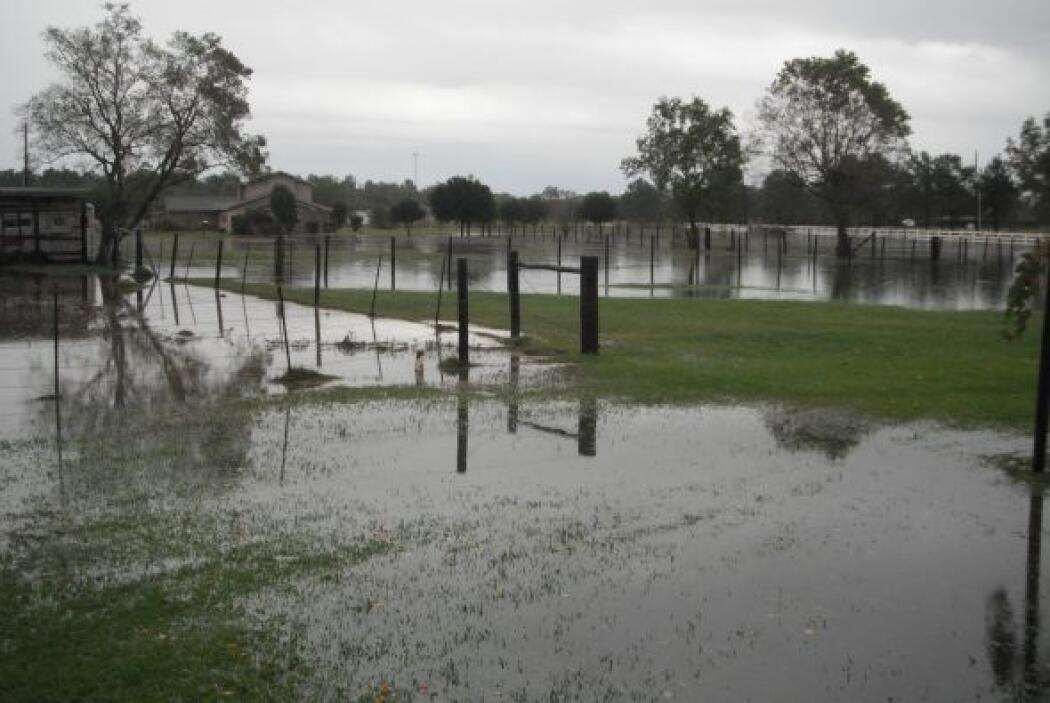 Fuertes lluvias causan daños en Houston