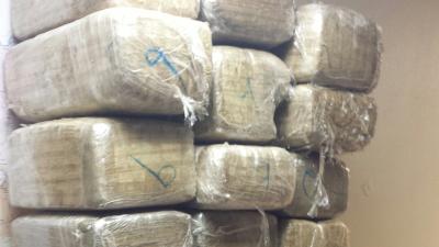 Más de 400 arrestos y 12.5 millones en droga decomisada en operación bin...