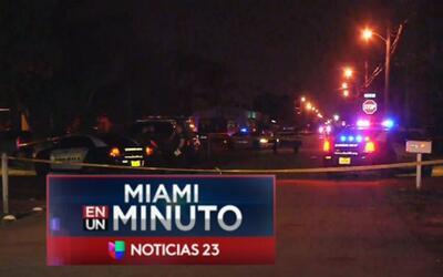 'Miami en un Minuto': una mujer embarazada, entre las víctimas mortales...
