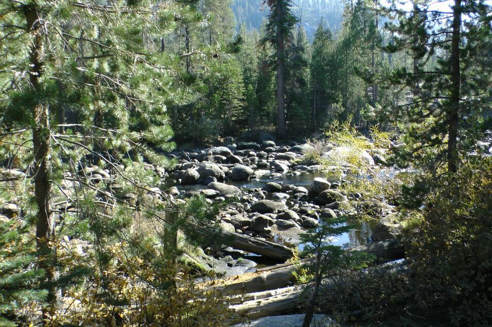 Yosemite: el tercer parque más visitado de USA