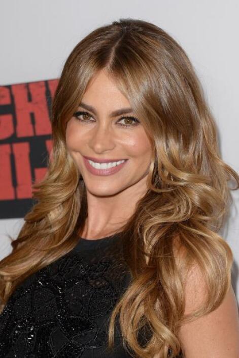 - La colombiana Sofía Vergara, con perfil bilingüe, tiene ganancias que...