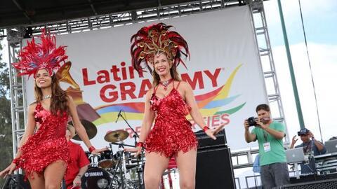 Bellas LGSP 2014
