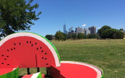 Desde el Hammock Grove Play Area de la isla así se ve el bajo Manhattan.