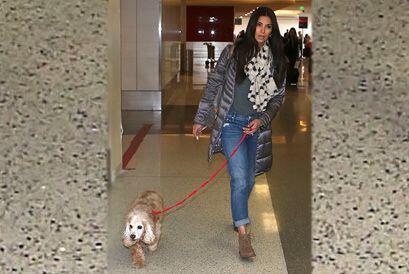 Roselyn Sánchez y Eric Winter se van de viaje con su hija, Sabella. ¡Y e...