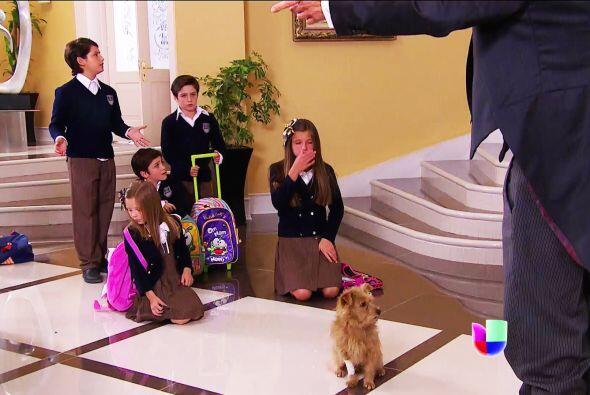 Ana, ¡la tropa Lascurain ya descubrió al perrito que rescat...