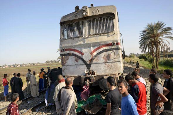 También fallecieron el conductor del vehículo y dos cuidadores, según la...